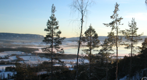utsikaskskogen